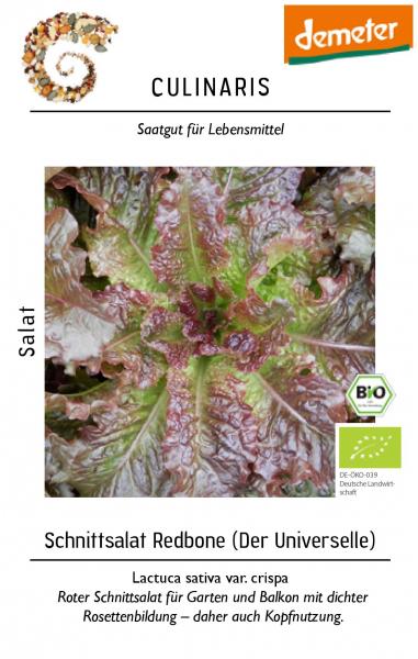 Schnittsalat.jpg